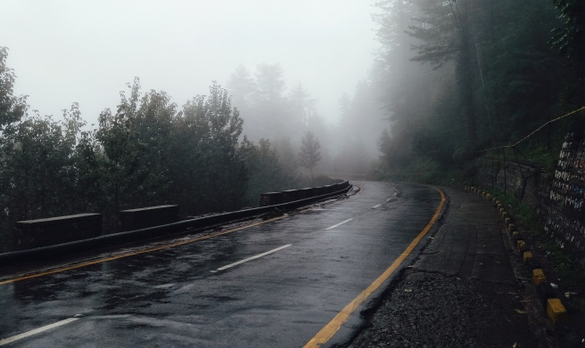 view_of_a_foggy_road